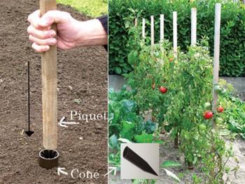 Tuteurs tomate en bois c nes la boutique du jardinage - Piquet de tomate ...